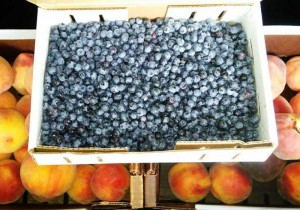 Blueberries and peaches