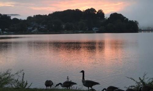 The beautiful Lake Junaluska at NOAC 2015. Photo by Cheryl Brumbaugh-Cayford
