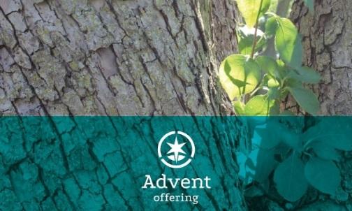 Find worship resources at www.brethren.org/adventoffering