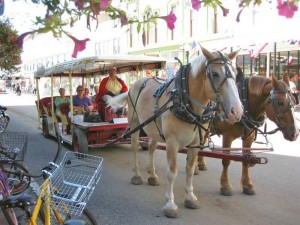 Horse carriage on Mackinac Island